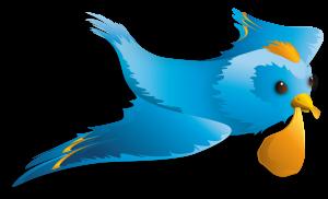 bird_big